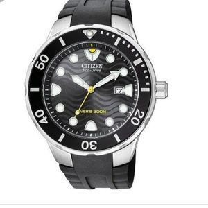 Citizen Men's Eco-Drive Pro Diver Watch